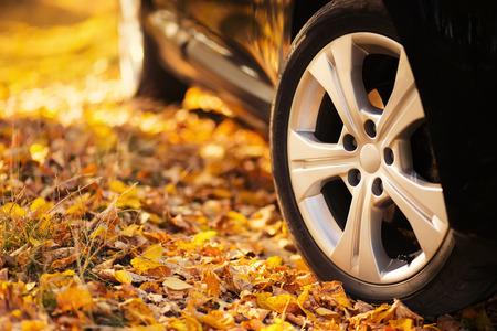 őszi autózás